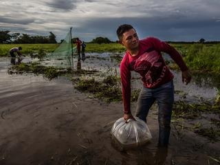 man working on orinoco river