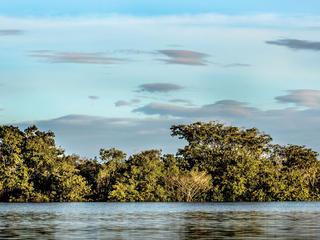 MKohut_COLOMBIA_Orinoco_River-075.jpg