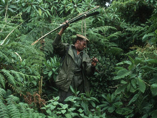ranger in the DRC