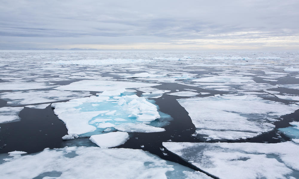 big oil in the arctic Washington (ap) democrats and environmental groups on tuesday denounced a republican plan to allow oil and gas drilling in alaska's arctic national wildlife refuge, saying it wo.