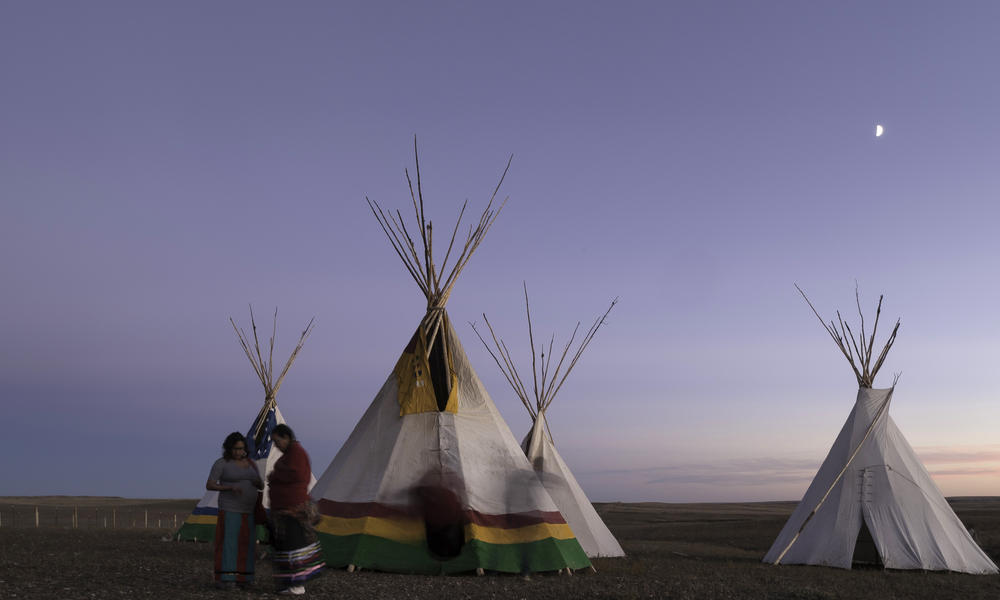 Buffalo people unite | Magazine Articles | WWF