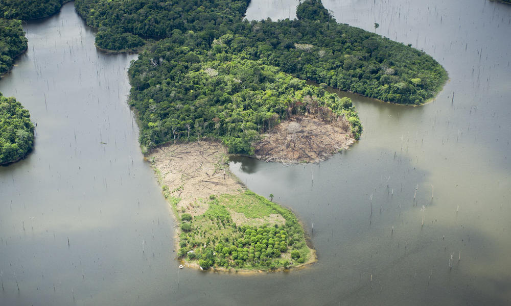 An aerial view of deforestation in the Amazon.
