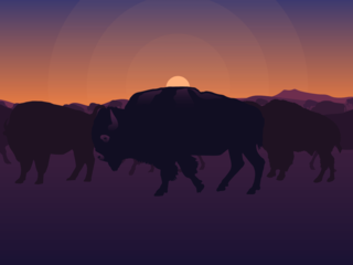 bison_info_slide_9_background
