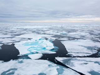 sea ice in the Arctic