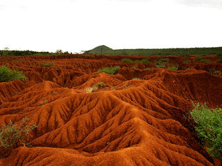 Soil Erosion and Degradation