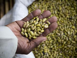 beans at a market