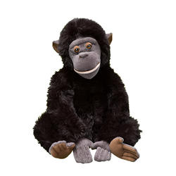 How-to-help-bonobo