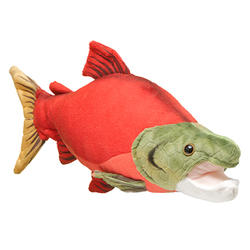 How to help sockeye salmon