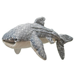 How-to-help-whale-shark