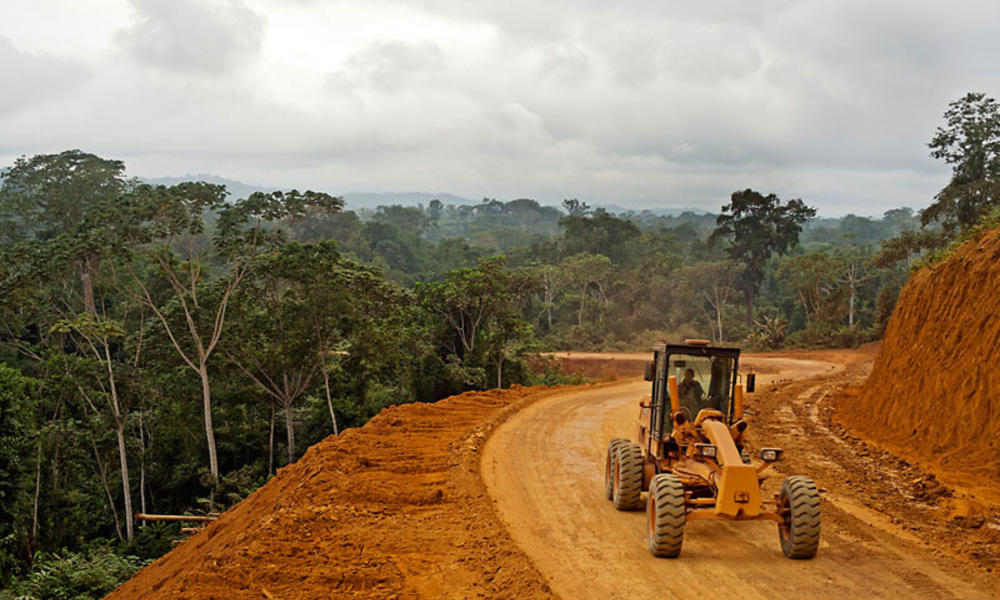 Infrastructure threats wwf for Construction habitat