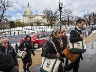 activists walk up steps to Congressional building