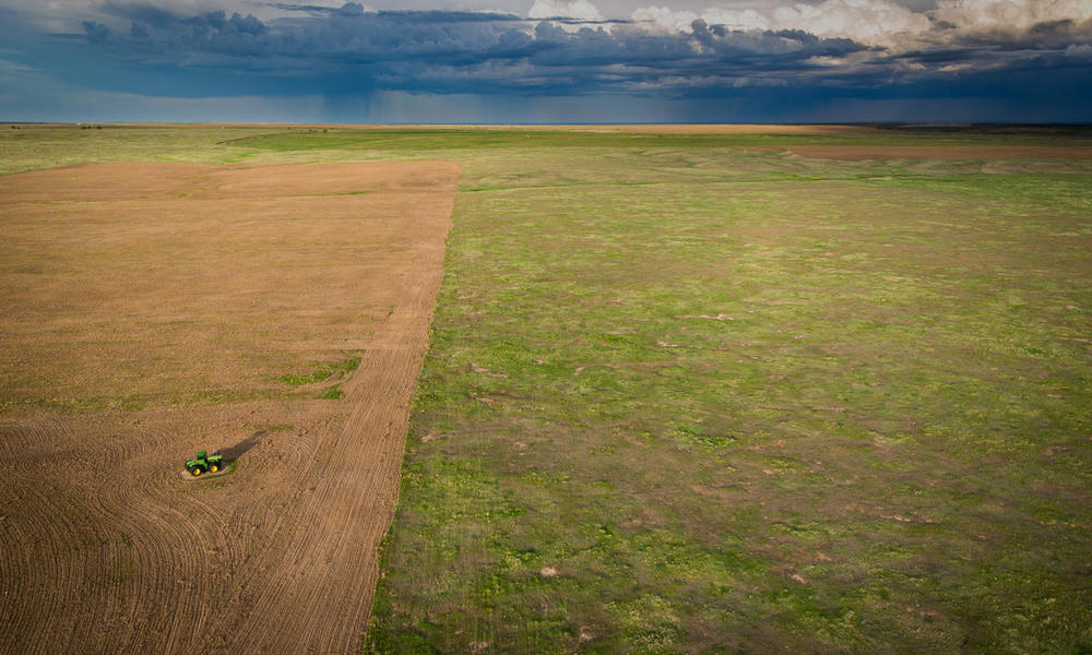 2.1 Million Acres of Grassland Habitat Lost in North American Great Plains in One Year
