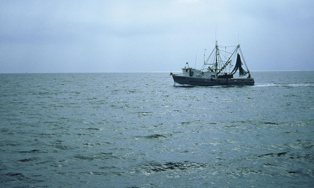 Shrimp trawler