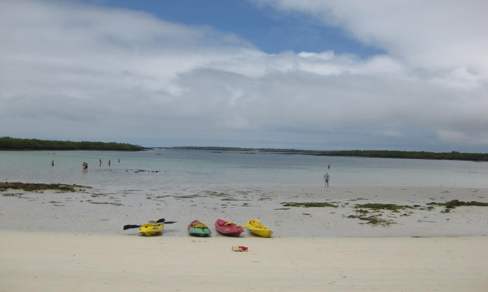 Kayaks on the Beach