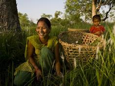 Gpn237779_women_nepal