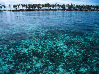 Reef and island in Indonesia