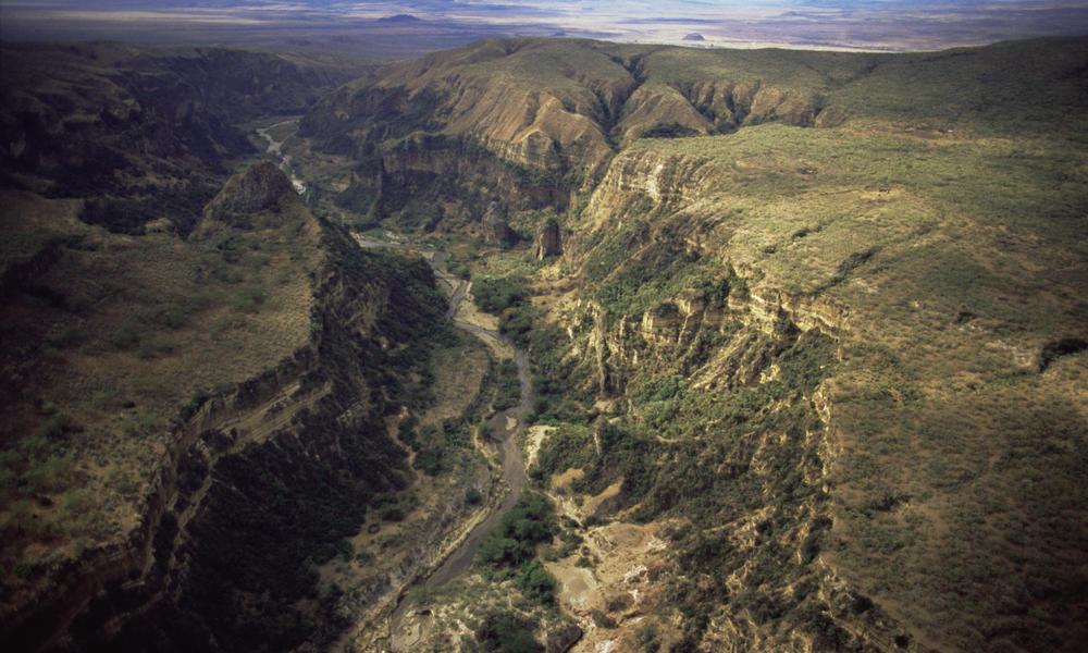 Madagascar_Hero_image_287222.jpg | Photos | WWF