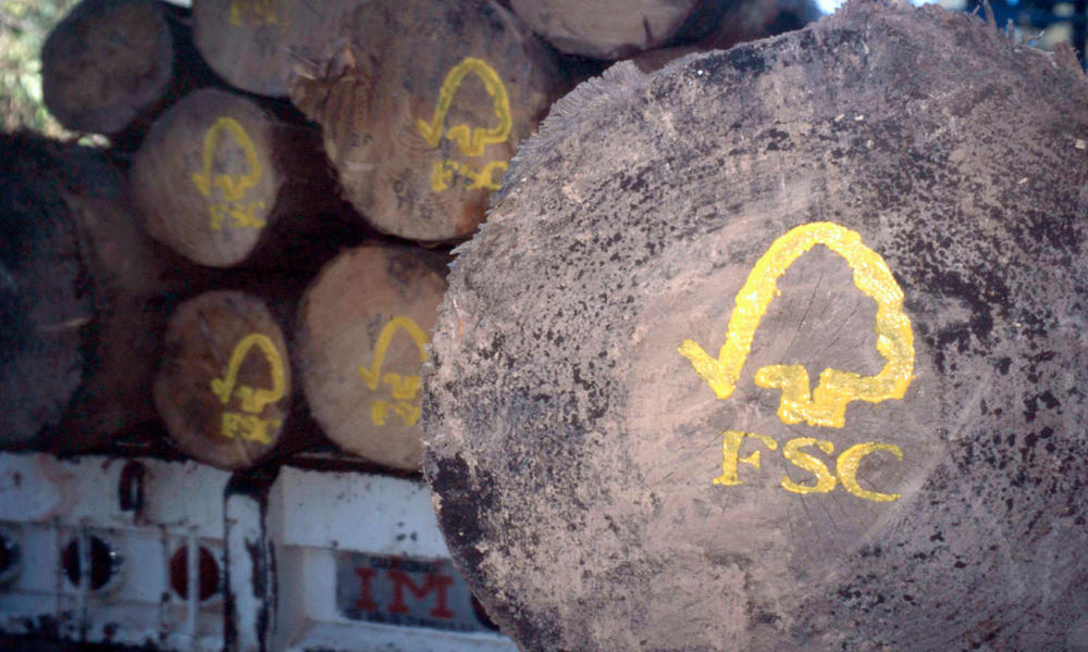 FSC logo painted on sustainable harvested logs. Uzachi forest, Oaxaca, Mexico