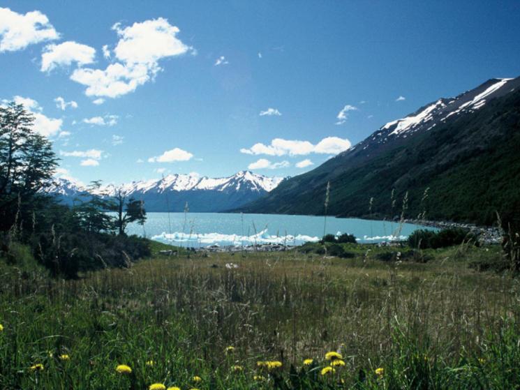 Los_glacieres2_(c)_nathalie_racheter_wwf-canon