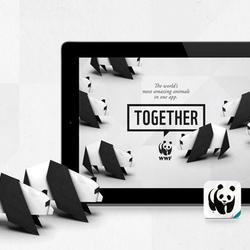 Together app 01.11.2013 help