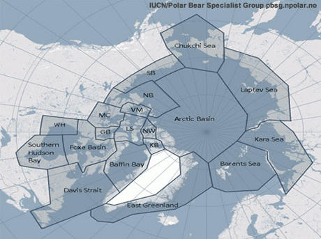 Polar_Bear_Populations4_1.15.13_Species