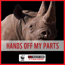 Hands Off My Parts (Rhino)