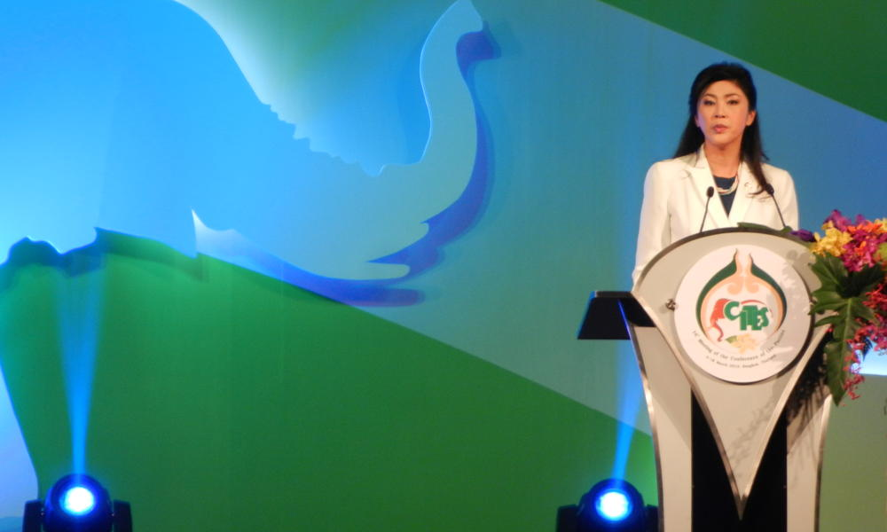 Thai prime minister announces ivory ban