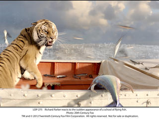 life-of-pi-blu-ray-dvd-LOP-275_rgb.jpg