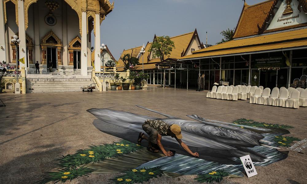 Man drawing elephant in chalk