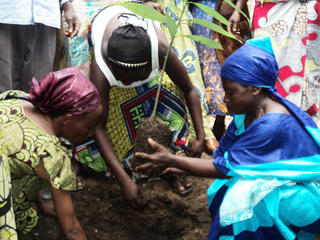 women_in_DRC_-_reforestation.jpg