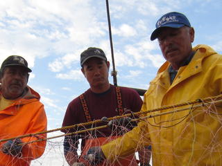 Bycatch met