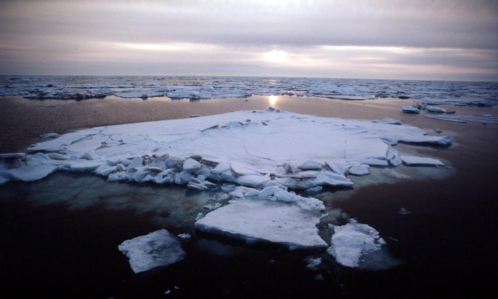 Arctic.Threats