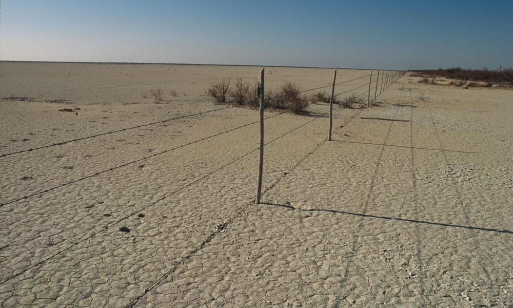 Seriously overgrazed (Ejido) communal land Chihuahua Desert Coahuila, Mexico
