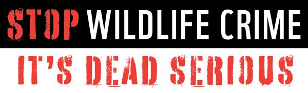 Stop Wildlife Crime: It's Dead Serious