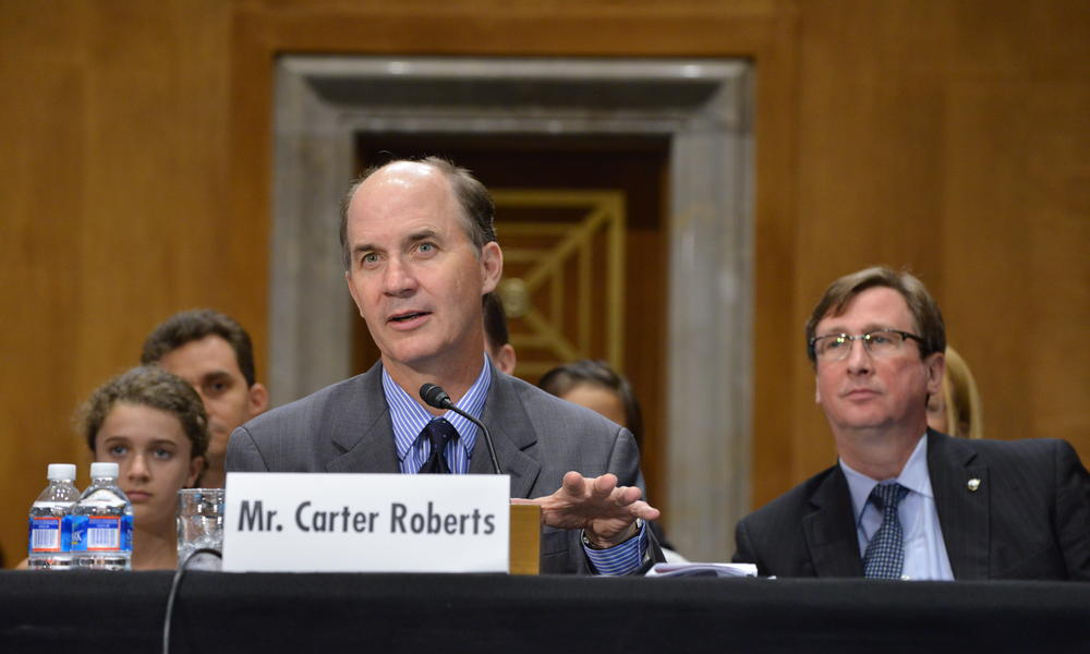 Carter testifies before Senate