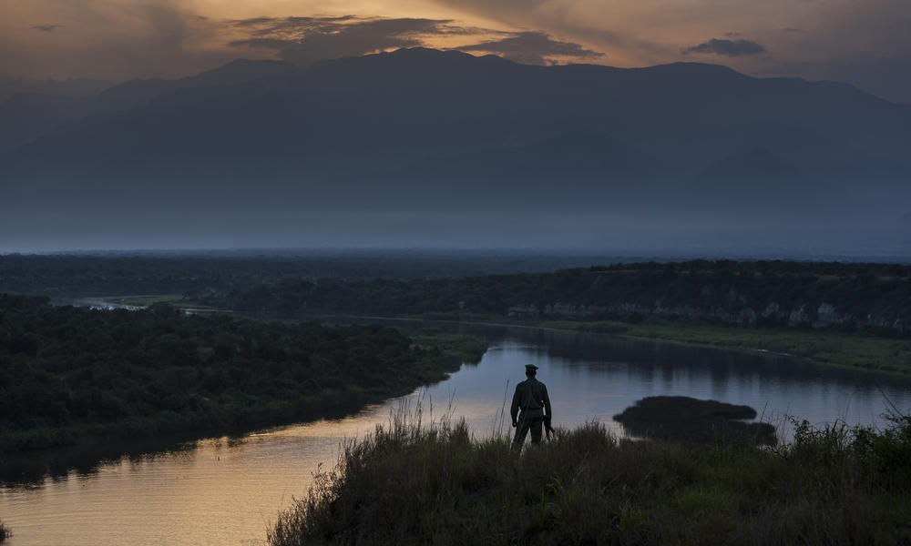 virunga landscape and person