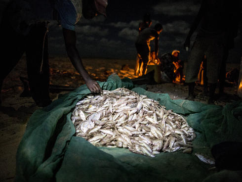 Mosquito nets used for fishing Mozambique