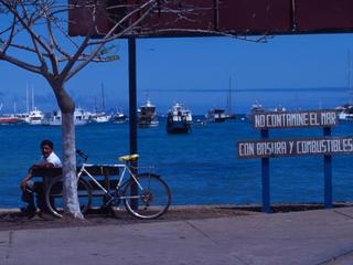 Galapagos Threats Section Photo