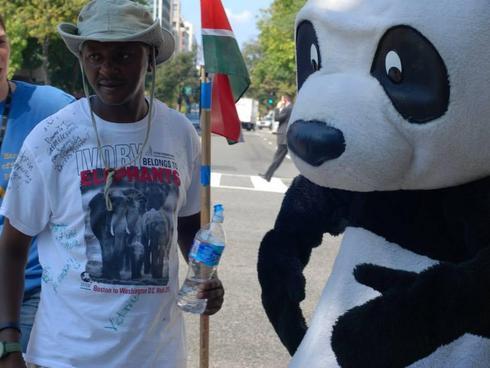 jim and panda