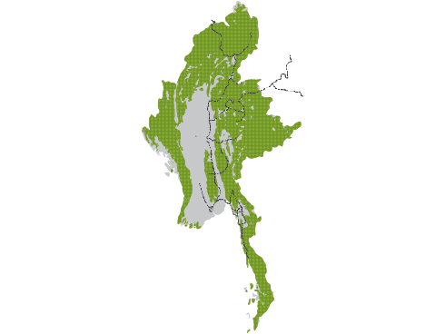 Map of Myanmar forests and roads