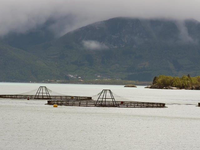 Ocean salmon farm in Norway