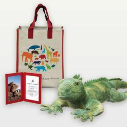 Iguana adoption 03.12.2014 help