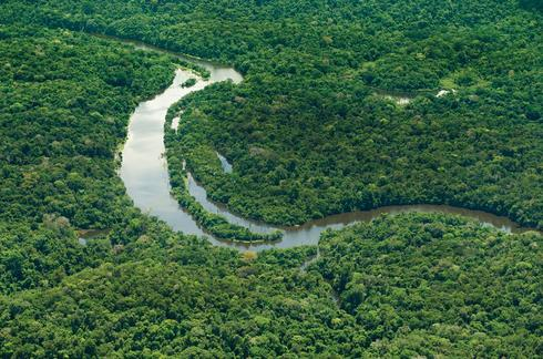 The Amazon and its tributaries