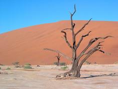 Desert-07182012-hi_115202