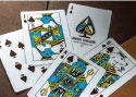 Theory 11 limited edition animal kingdom cards