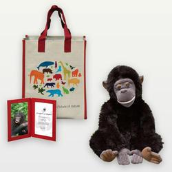 Bonobo_plush_07.24.12_help