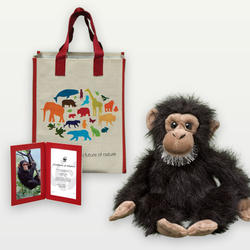 Chimpanzee_plush_07.24.12_help
