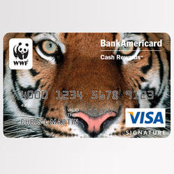 Bank of america 06.12.2014 help
