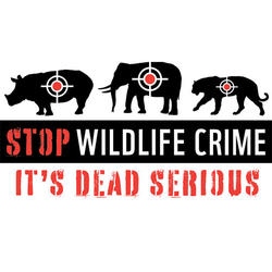 Stop wildlife crime 06.12.2014 help