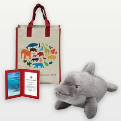Dolphin_plush_07.24.12_help